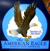 American Eagle aircraft logo from the WAAAM Collection.